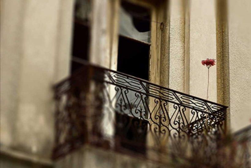 Ruina y flor